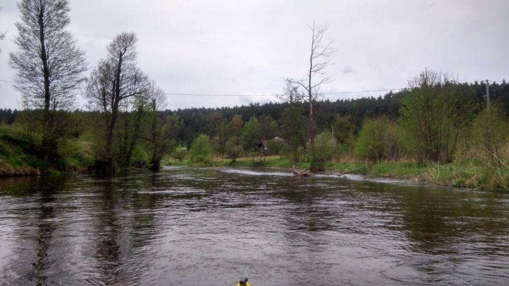 Spływ kajakiem - Stara Rzeka 7