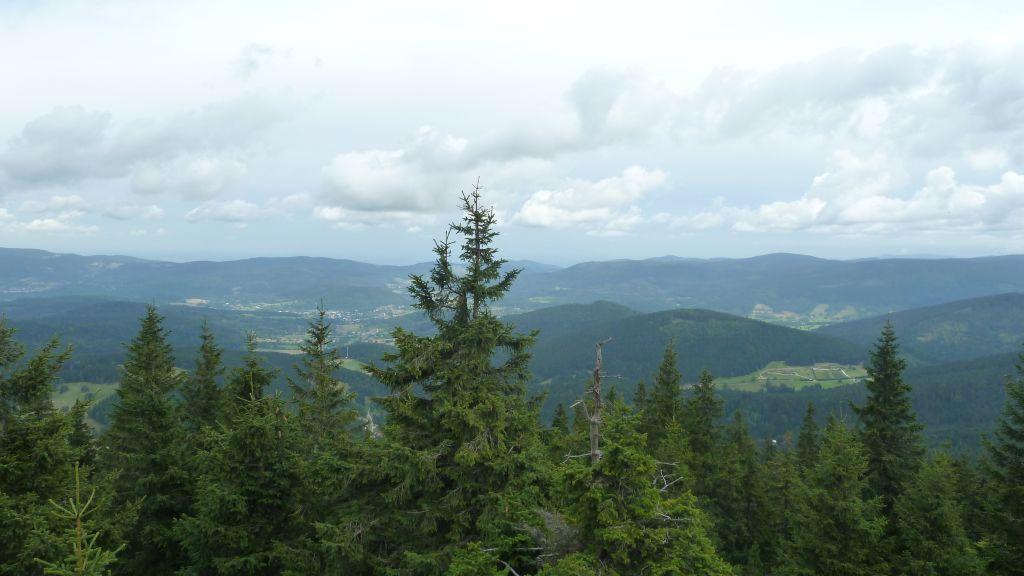 Czarna Góra - szczyt i wieża widokowa 1