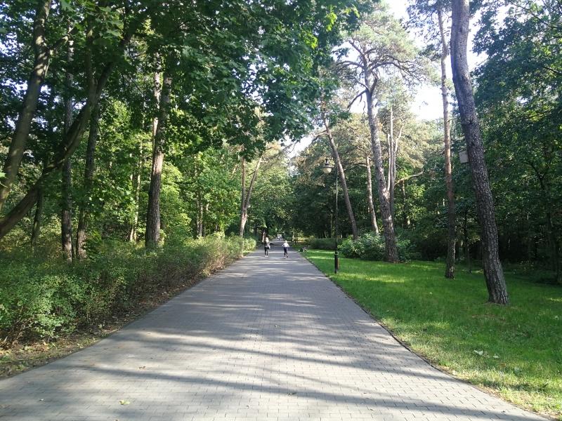 Park na Bydgoskim Przedmieściu 3