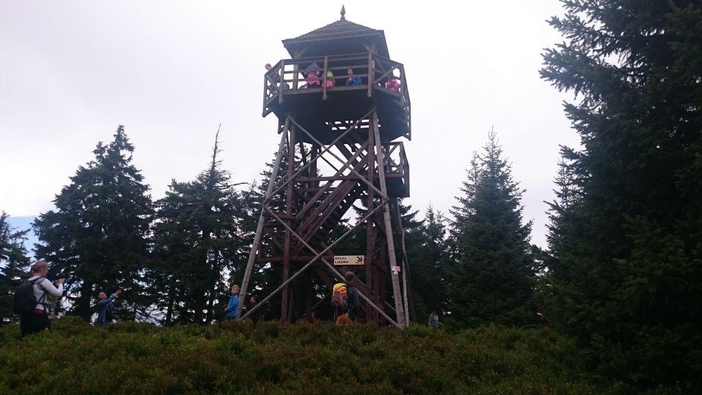 Czarna Góra - szczyt i wieża widokowa
