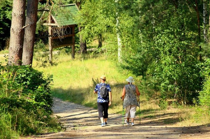 Malownicze ścieżki spacerowe - Biały Dunajec 1