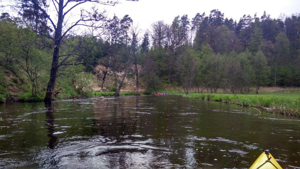 Spływ kajakiem - Stara Rzeka 9