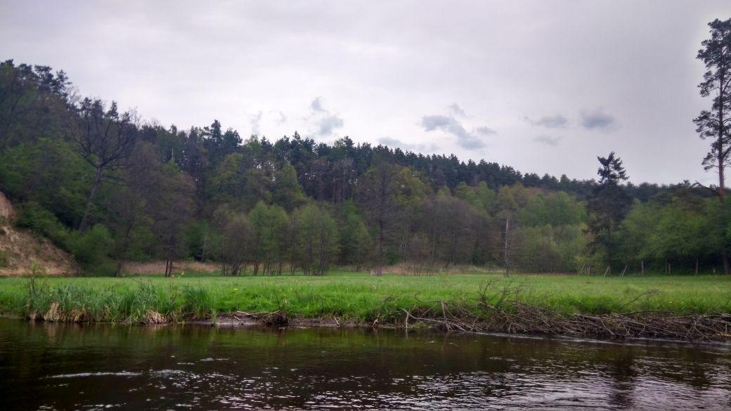 Spływ kajakiem - Stara Rzeka 10
