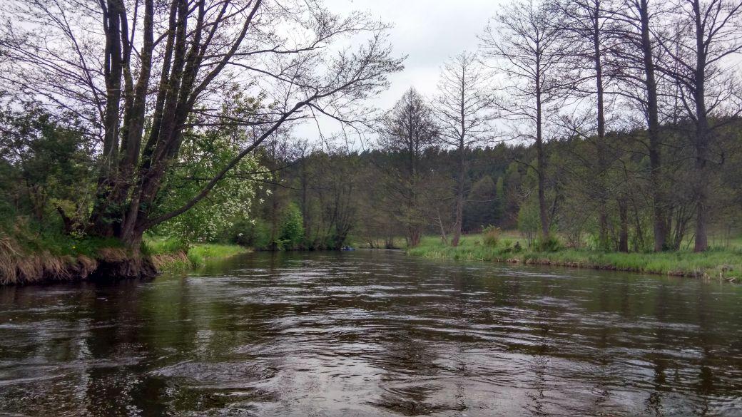 Spływ kajakiem - Stara Rzeka 8