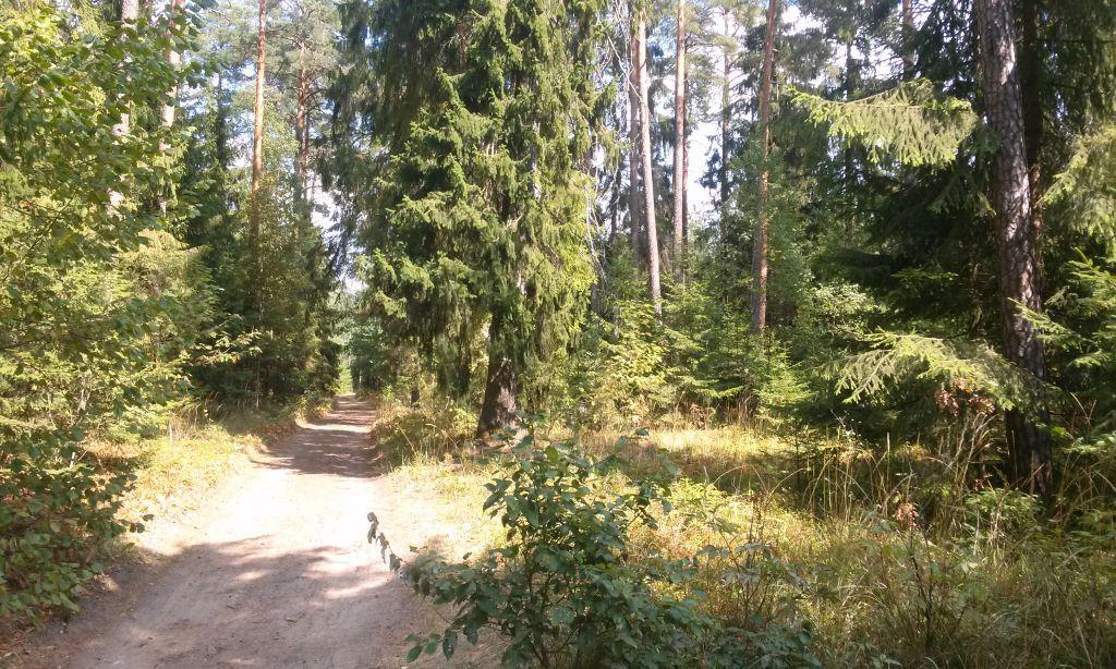 Trasy rowerowe Supraśl - Puszcza Knyszyńska 3