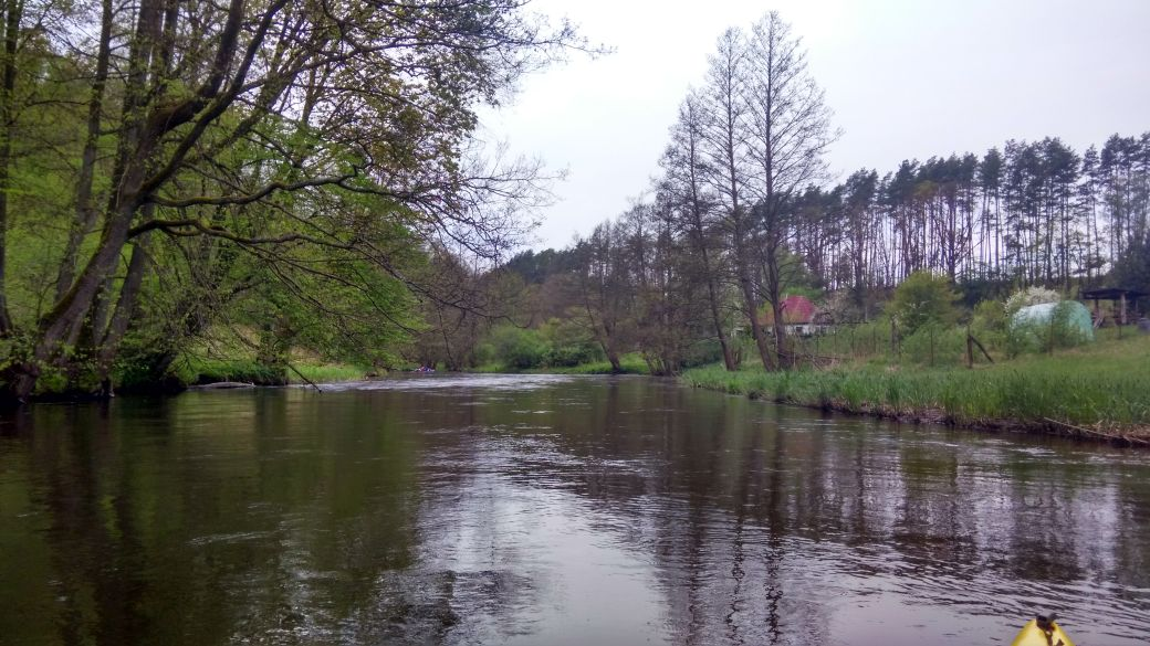Spływ kajakiem - Stara Rzeka 11
