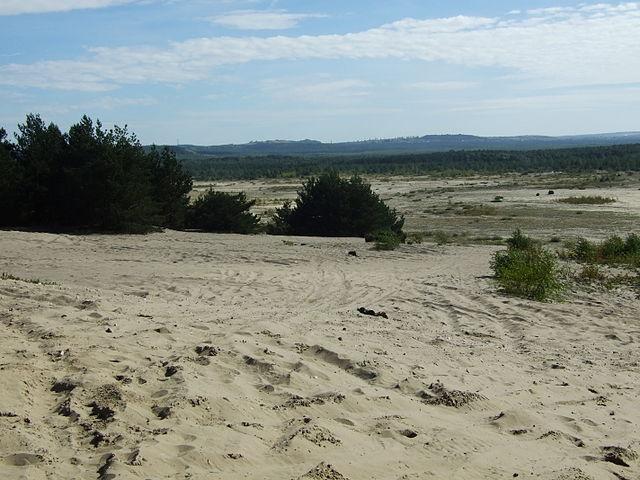 Pustynia Błędowska największa pustynia w Europie 1