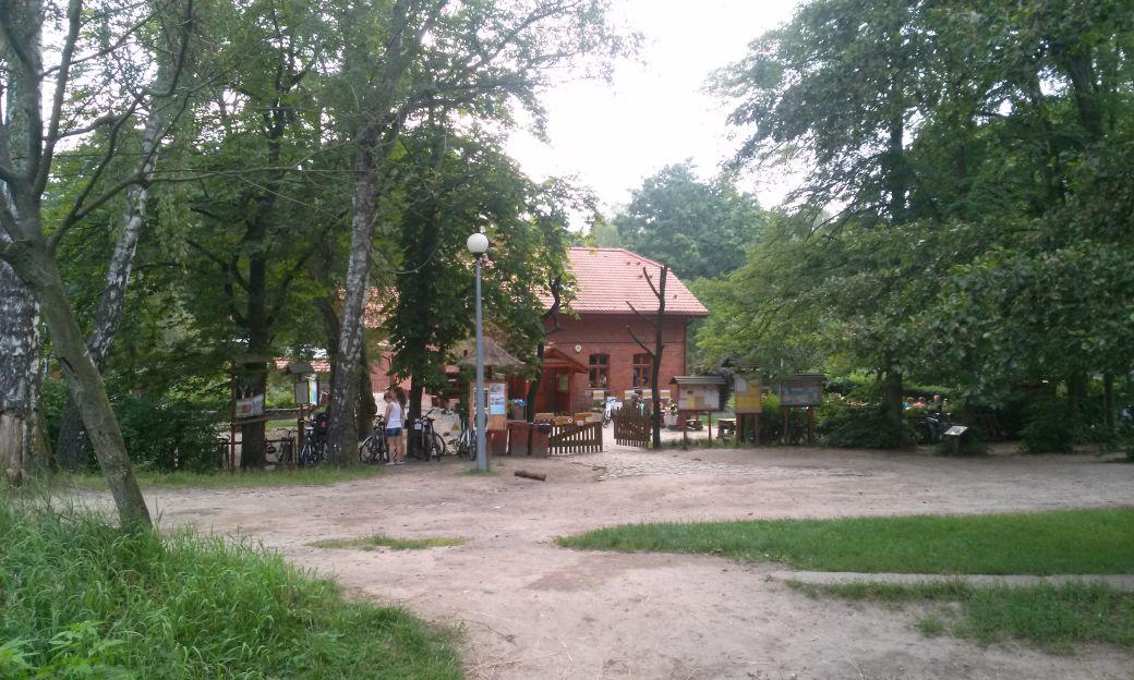 Barbarka atrakcja dla całej rodziny w Toruniu
