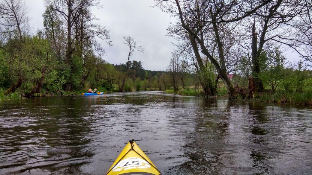 Spływ kajakiem - Stara Rzeka 4