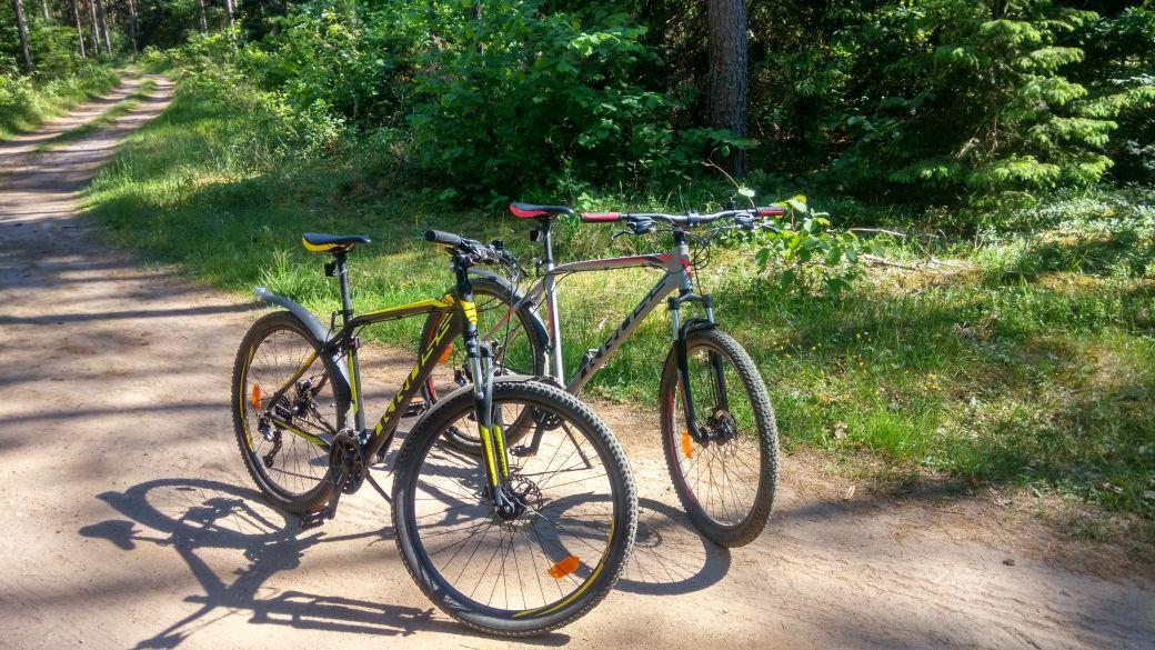 Wypożyczalnia rowerów w Augustowie 1