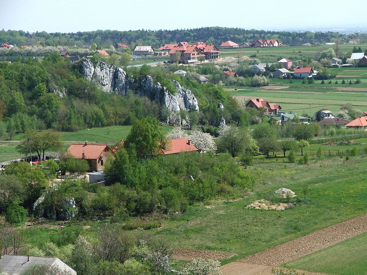Jaskinia Wierzchowska Górna – kręte korytarze i nietoperze