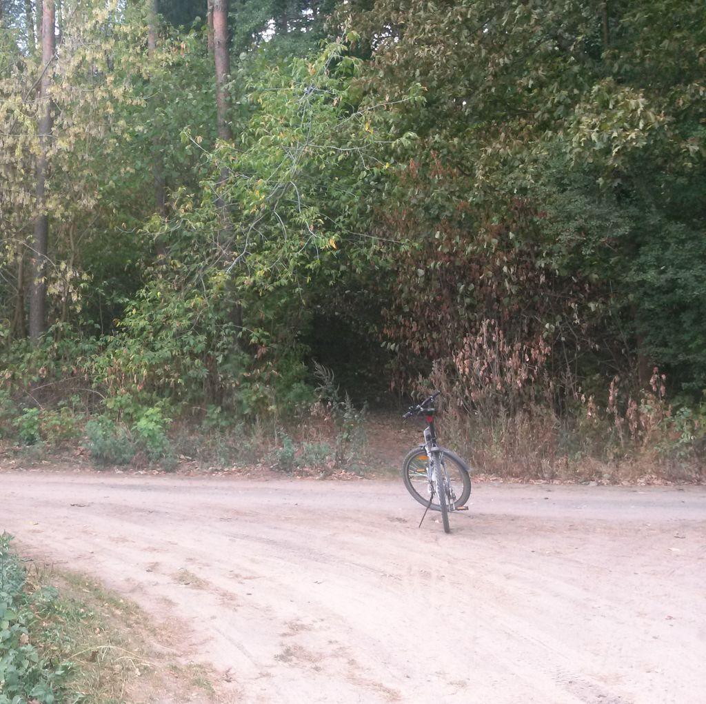 Wypożyczalnia rowerów w Supraślu 2
