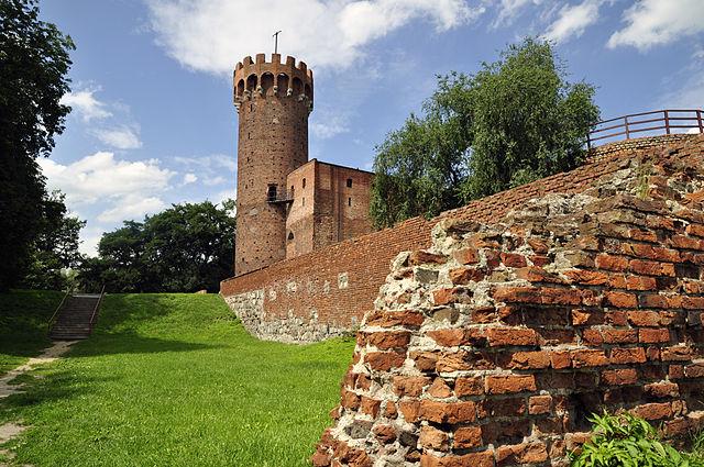 Zamek w Świeciu 1