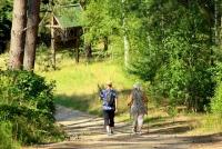 Malownicze ścieżki spacerowe - Biały Dunajec
