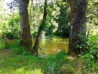 Florystyczny rezerwat przyrody Piaśnickie Łąki